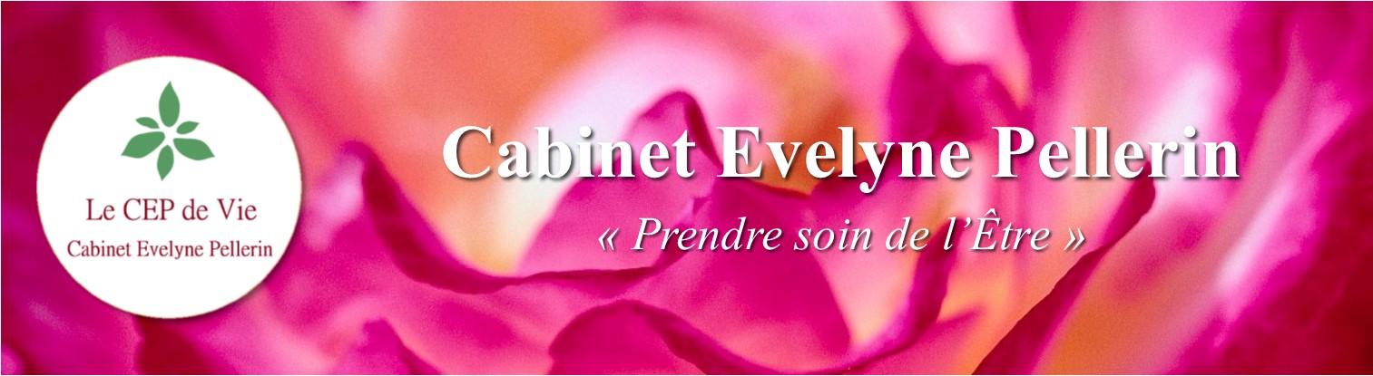 Cabinet Evelyne Pellerin